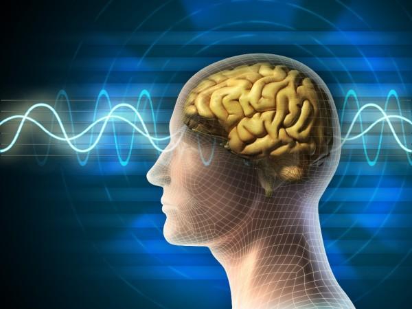 Ok. 20% zachorowań na Alzheimera jest uwarunkowanych genetycznie. Za więszkość z nich odpowiada gen ze strony matki / fot. Fotolia