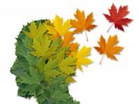 Czy można już wyleczyć chorobę Alzheimera?